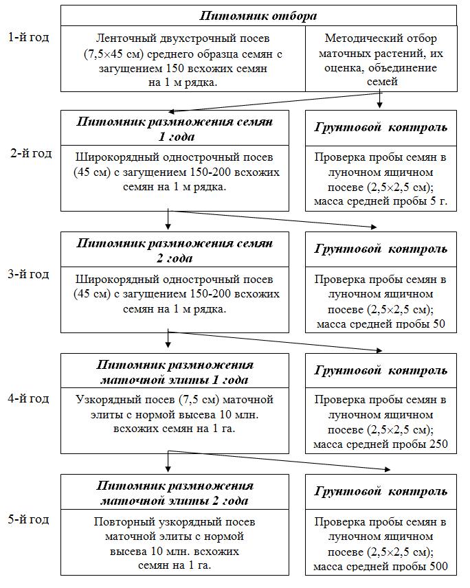 Инструкция По Ведению Технологического Процесса Производства Семян Кукурузы
