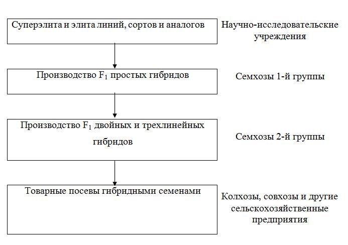 Схема производства гибридных