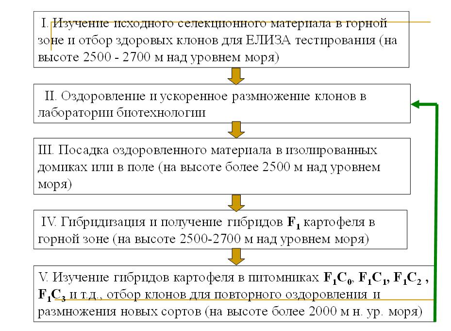 Схема сочетания традиционных